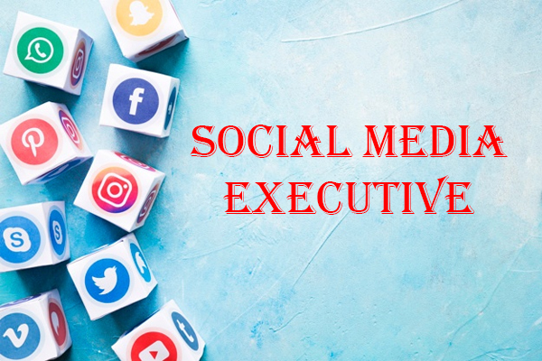 Social media executive job roles
