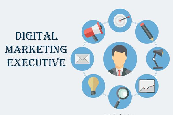 digital marketing executive job responsibilities