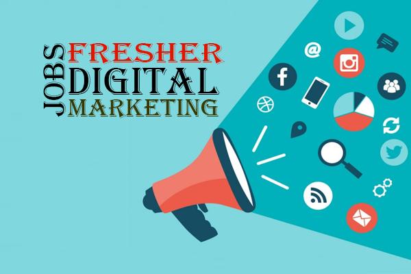 Jobs for Freshers in Digital Marketing